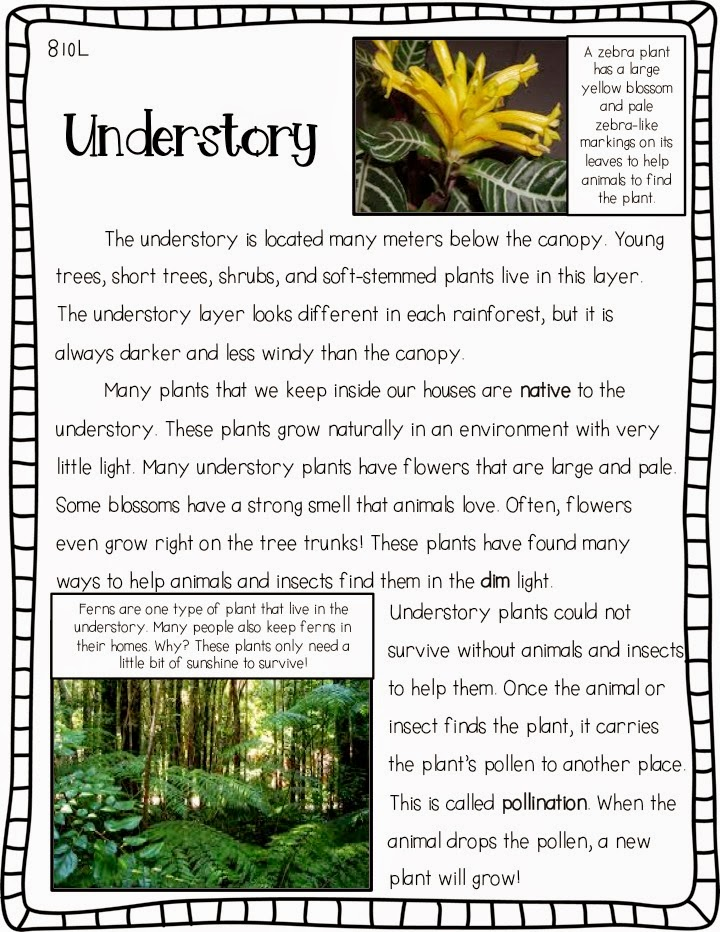 -Eer In Words Of Reading Passage Image Pdf - Phonics ...