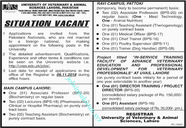 Advertisement for University of Veterinary and Animal Sciences Lahore Jobs 2018