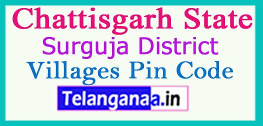 Surguja Pin Codes in Chattisgarh State