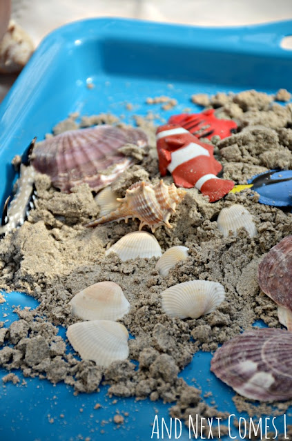 Sand dough recipe with seashells on a blue tray