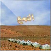 Amina Fakhet-Anaj3
