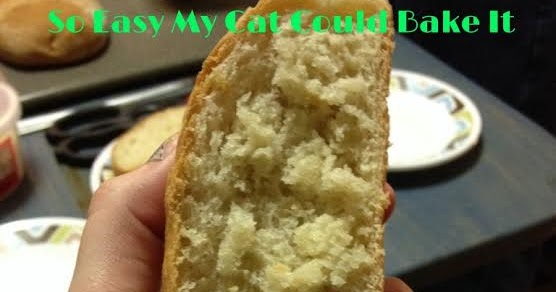 bread... | Cat bread, Cats, Funny cat pictures  |Cat French Bread