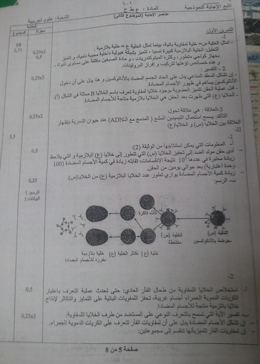 العلوم الطبيعية