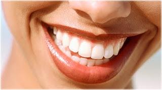 south miami dentist