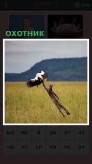 в поле поймал птицу в полете леопард как охотник