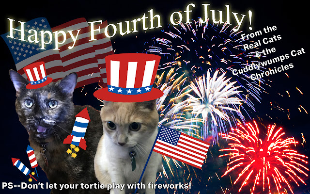 Happy Fourth of July from the Real Cats