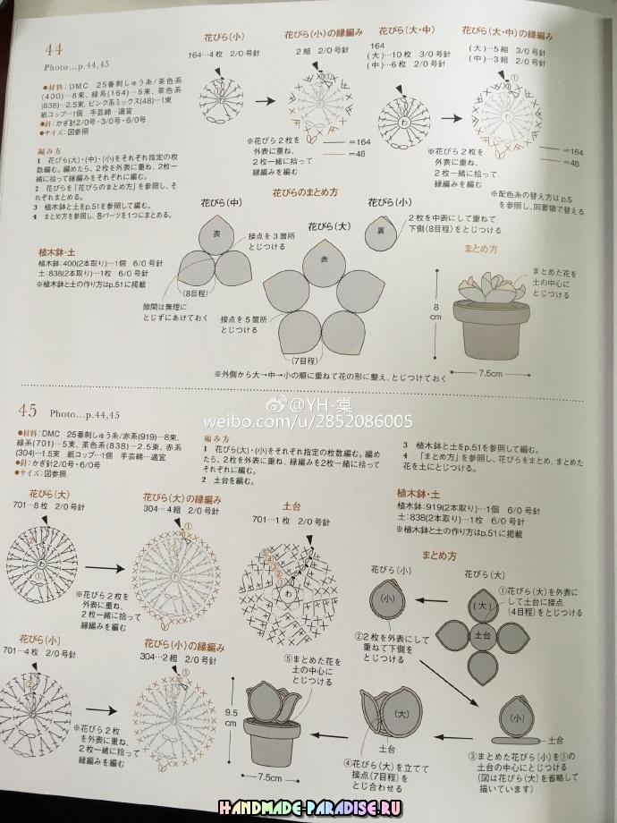 Схемы вязания крючком кактусов и суккулентов (1)