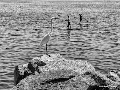 Praia do Flamengo (Rio de Janeiro, Brazil), by Guillermo Aldaya / AldayaPhoto