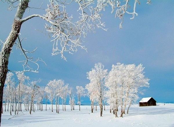 Frasi Sull Inverno Scuolissima Com