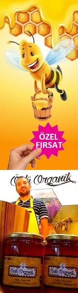 Özlü Organik Bal 160x600 Reklam Baner