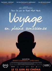 J'ai vu le film de Thich Nhat Hanh : Voyage en pleine conscience