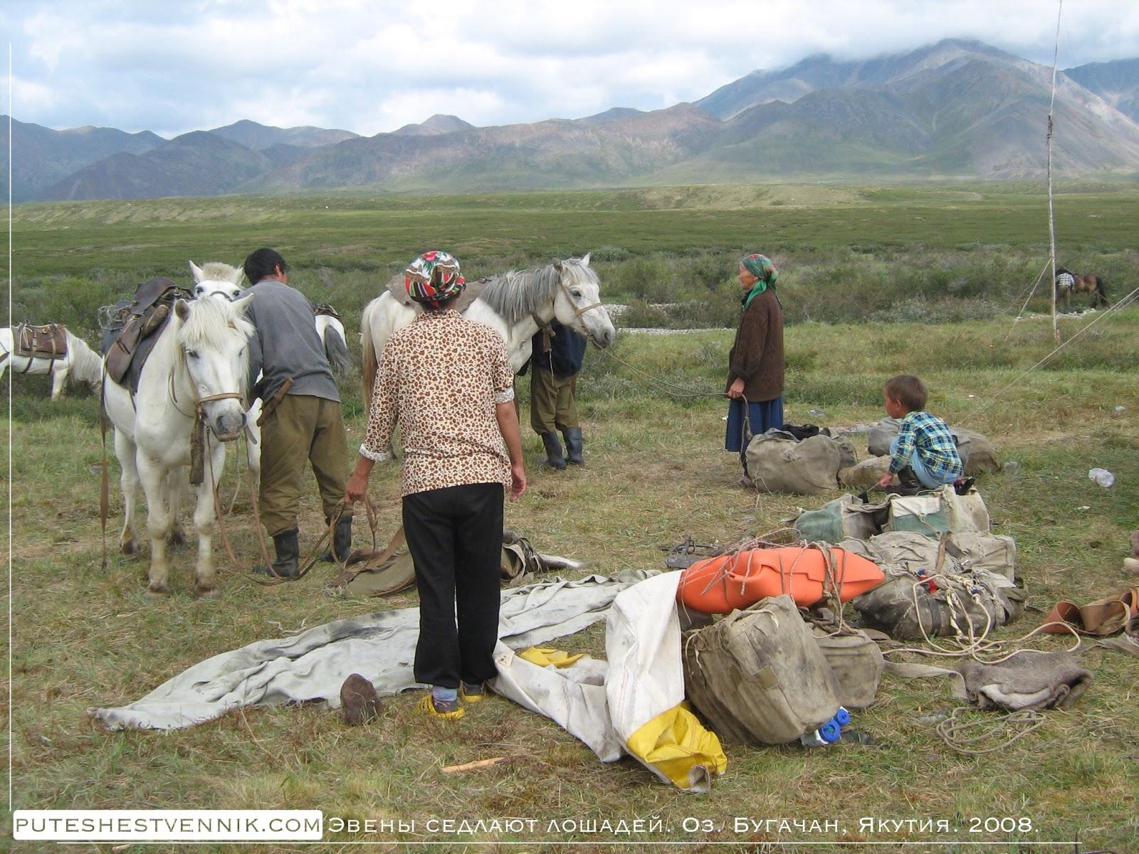 Эвены седлают лошадей