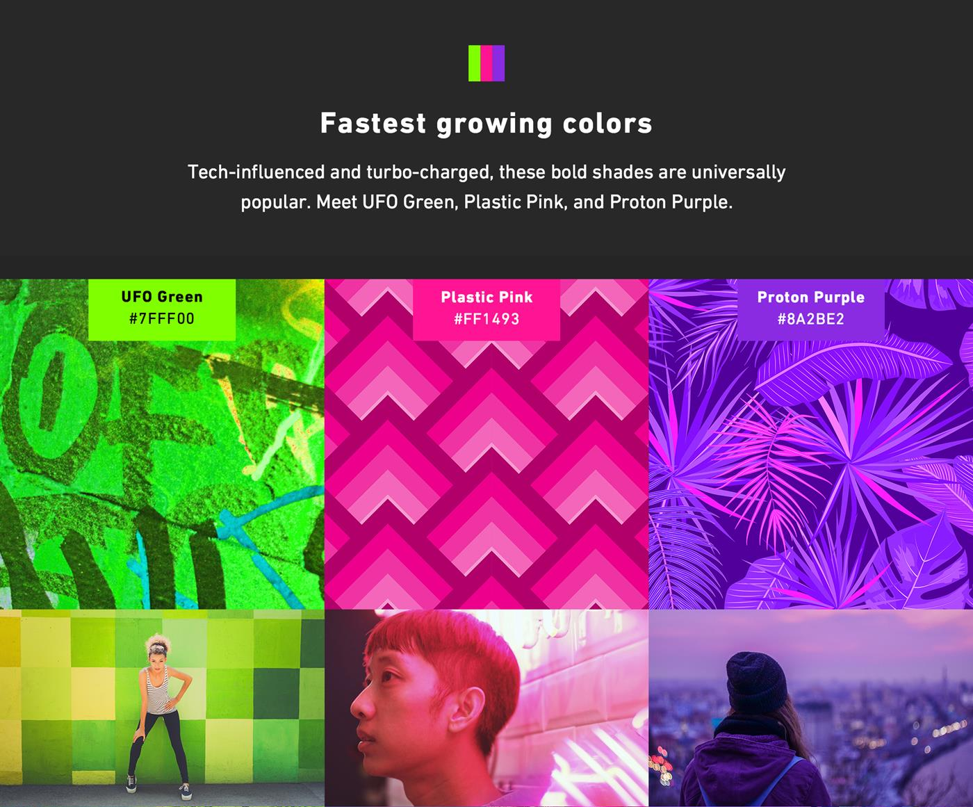 Shutterstock's 2019 Color Trends Infographic Shares Up-And-Coming Hues To Note