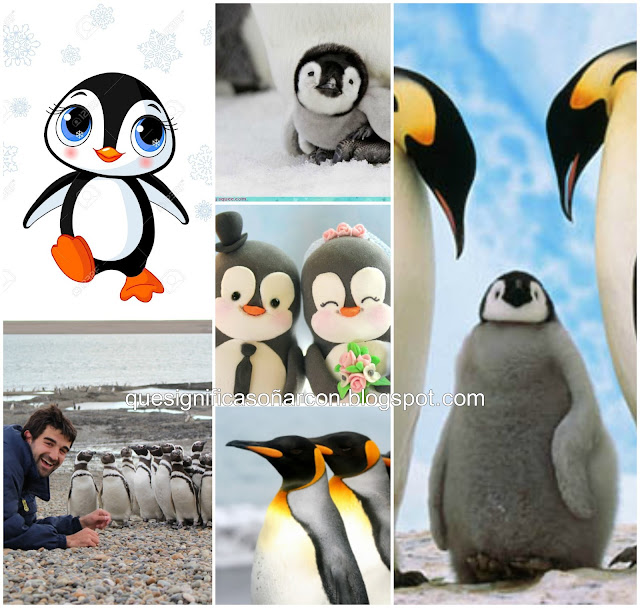 por que soñamos con pinguinos