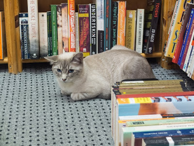 Seattle in Libraries and Bookshops