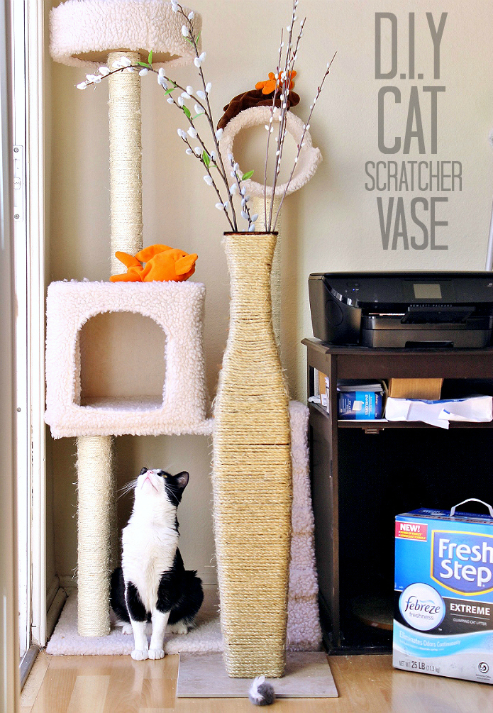 Ditch your old cat litter with this affordable D.I.Y Cat Scratcher Vase, and experience the odor control and low dust formula of all new #FreshStepFebreze at PetSmart. #Sponsored