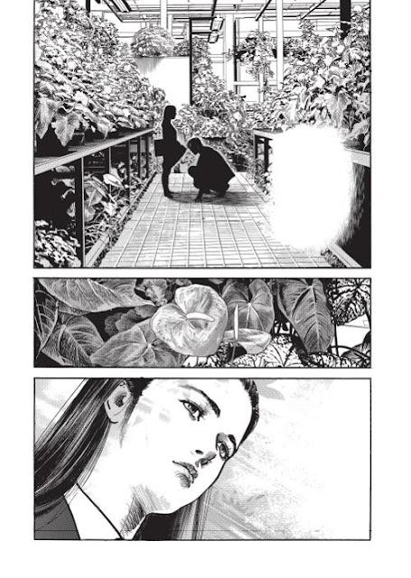 Critique Manga, Culture Japonaise, Delcourt / Tonkam, Japon, Manga, One Shot, Ryoichi Ikegami, Seinen,