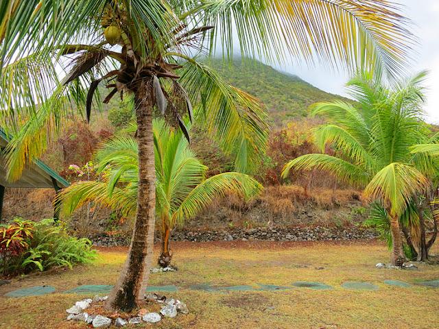Miriam C. Schmidt Botanical Garden, St Eustatius