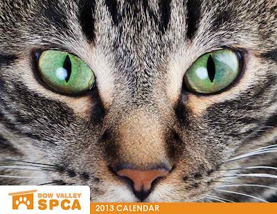 2013 Bow Valley SPCA calendar