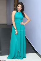 Priya Singh in a sleeveless Green Gown at Manasainodu music launch 011.08.2017 ~ Exclusive Celebrity Galleries 017.JPG
