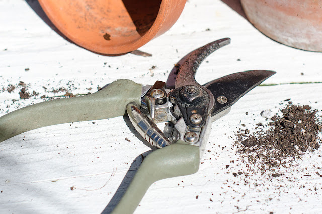 Keeping your garden tools sharp is important for the health of your garden and landscaping.   Find out about one simple gadget you can use to effortlessly maintain a sharp blade.  #gardening #usefultools #summer #simpletips #andersonandgrant