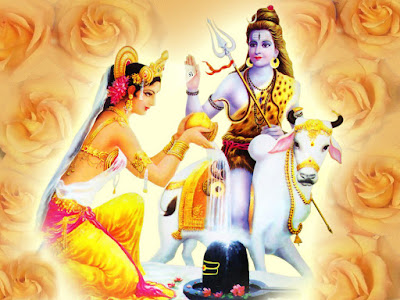 Image result for lord siva images