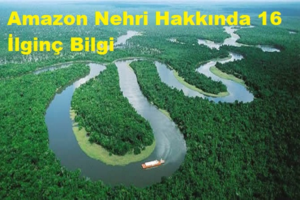 Amazon Nehri Hakkında 16 İlginç Bilgi