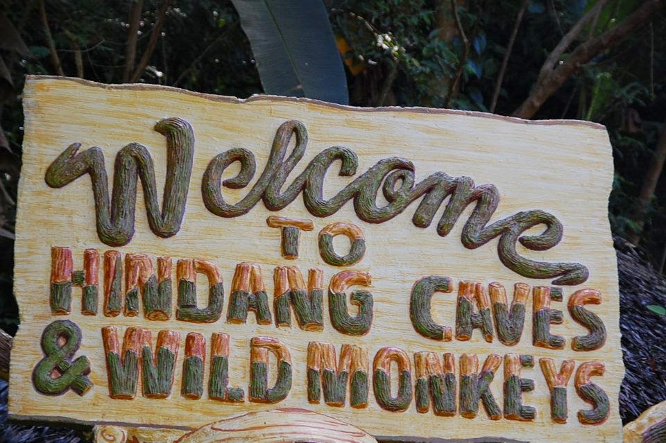 Hindang Caves and Wild Monkeys in Leyte