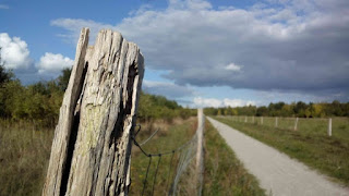 Feldweg hinter dem Hagenower Ring Richtung Landesgrenze