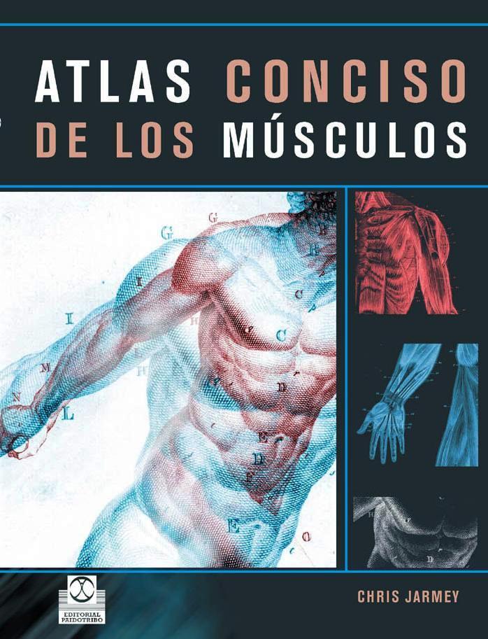 Atlas conciso de los músculos – Chris Jarmey