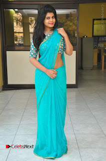 Telugu Actress Alekhya Stills in Green Saree at Swachh Hyderabad Cricket Press Meet  0099.JPG