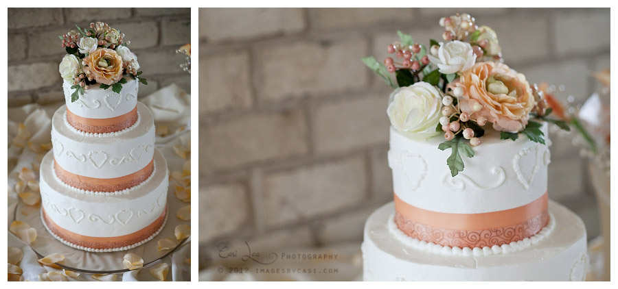 Cake by Bernies Specialty Cakes, photos by green bay wedding photographer Casi Lea Photography
