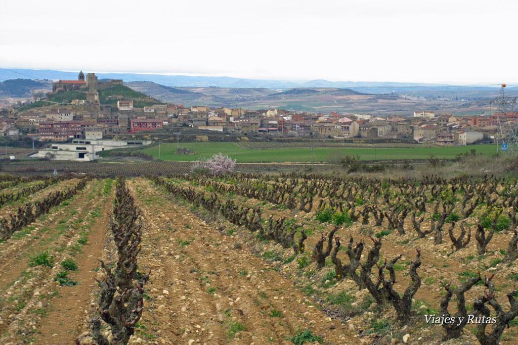 Vistas de San Vicente de la Sonsierra