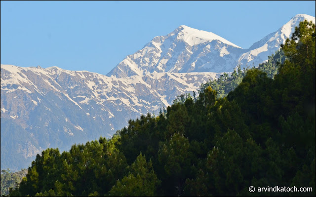 Beautiful. Snow, Covered, Dhauladhar, Hills, Green Forest, Baijnath, Himachal,
