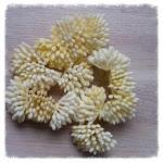 http://www.foamiran.pl/pl/p/srodki-do-kwiatow-mini-matowe-cieniowane-/801