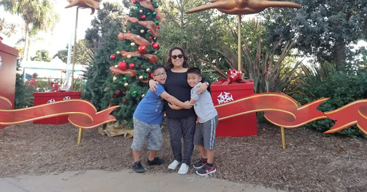 Enjoy the Holidays at SeaWorld San Diego