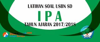 Contoh soal Ujian Sekolah Berstandar Nasional  Contoh Soal USBN IPA Kelas 6 SD/MI Tahun Ajaran 2017/2018