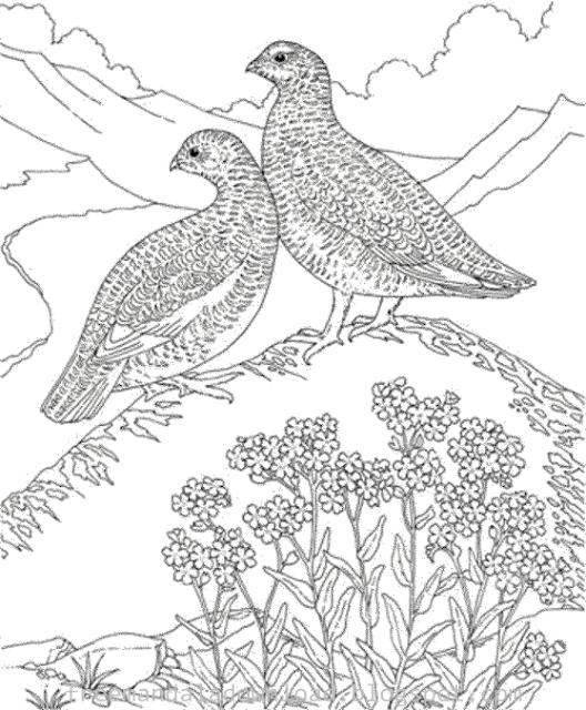 Vogel-Mandala-Design download pdf-Bird Mandala Case