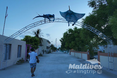 Maafushi Island Review