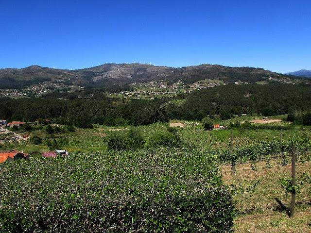 Vista da Quinta de Soalheiro em Melgaço