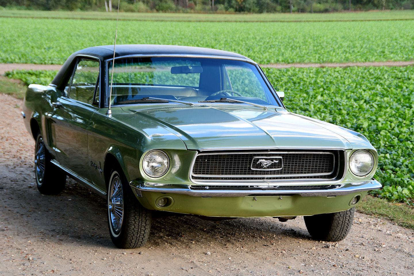 1968 ford mustang coupe 289 v8