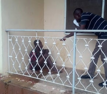 She Reportedly Turned To A cat In Ibadan On Tuesday, See Photos