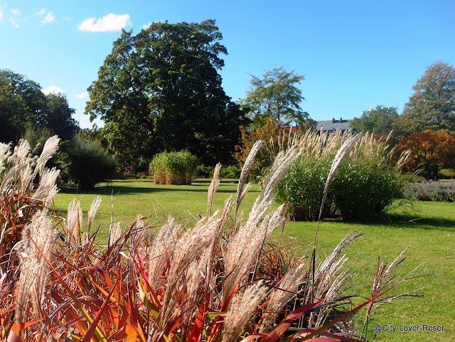Lund, Botaniska trädgården
