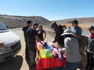 Atacama Vegas de Quepiaco