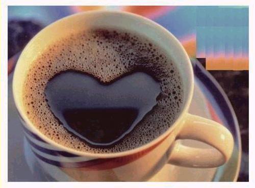 Fotos E Imagenes: Tazas De Café
