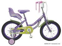 Sepeda Anak Wimcycle Mini Jolly 16 Inci