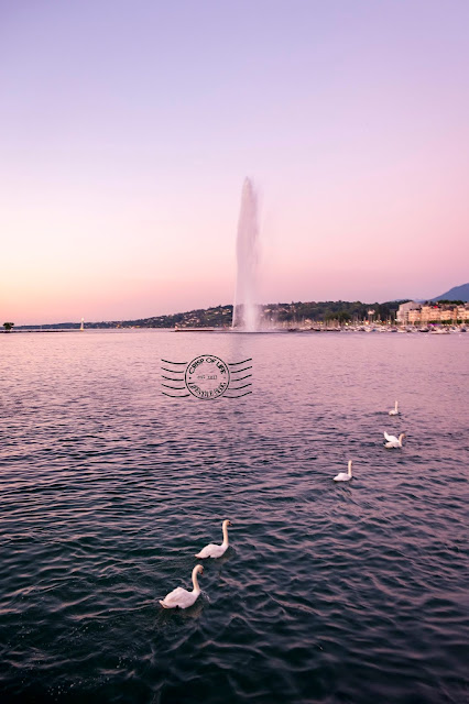 12 Things to Do in Geneva