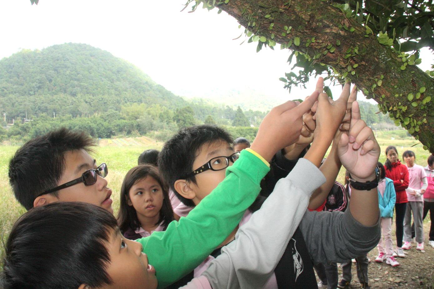 荒野保護協會雙連埤生態教室: 生態與農村體驗學習校外教學--宜蘭壯圍國小