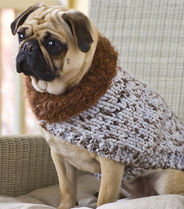 Knitting Pattern Dog Coat Pug : Miss Julias Patterns: Free Patterns - 20+ Dog Sweater Coats to Knit &...