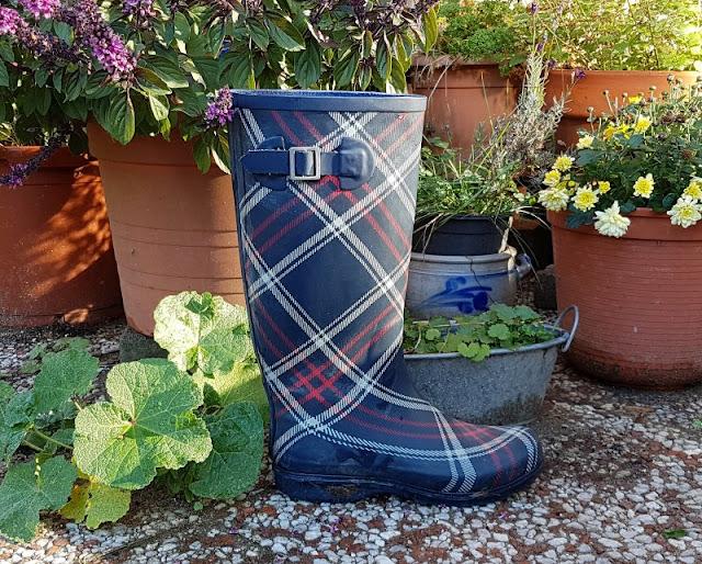 DIY: Schnell mal einen Stiefel bepflanzen (Eine einfache Idee). Ich zeige Euch auf Küstenkidsunterwegs, wie Ihr einfach Blumen oder Kräuter in einen alten, kaputten Gummistiefel planzen könnt. Eine tolle Upcycling-Idee!